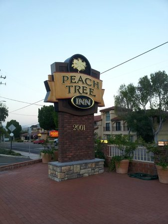 Peach Tree Inn: Fachada