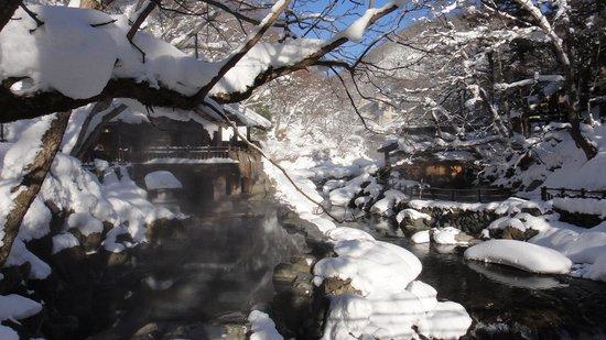 Minakami Onsen: 冬天來這裡真的很美很美 美呆了