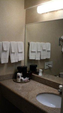 Comfort Inn Yosemite Valley Gateway: Banheiro