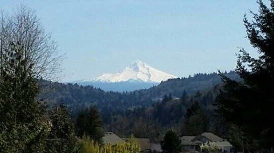 Powell Butte Nature Park: Mount Hood