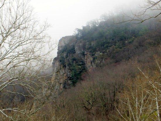 Seneca Rocks State Park: View of Seneca Rocks from Below
