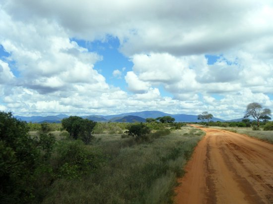 Julius Tact Safaris: Road