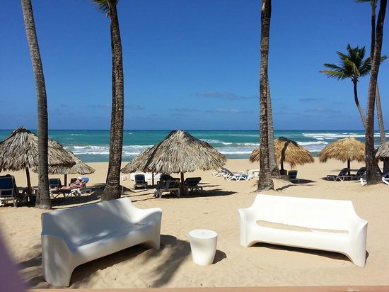 Excellence Punta Cana: Oceanview
