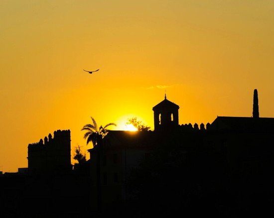 Calahorra Tower: You should go to this place at sunset. Lucky me to take this amazing sunset! Córdoba a must see