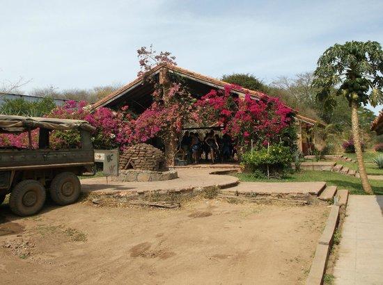 Huana Coa Canopy Adventure: Meeting area with washroom facility