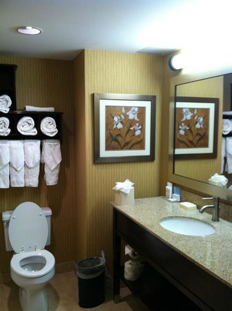 Hampton Inn Philadelphia Center City - Convention Center : Room 212, Bathroom