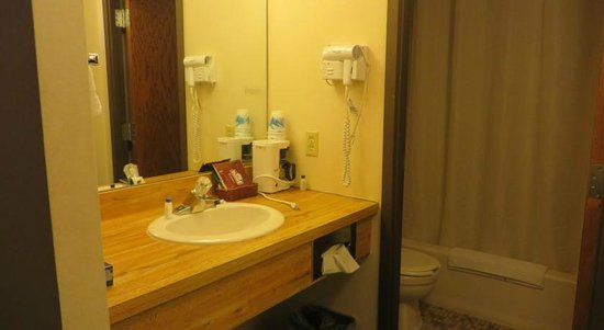 Voyageur Inn and Conference Center: Vanity Amenities