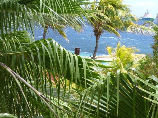 Renaissance Curacao Resort & Casino: vista parcial desde el balcón de la habitación