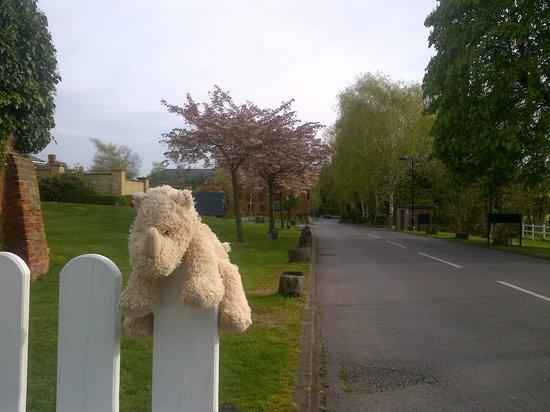 De Vere Beaumont Estate: Driveway from the carpark