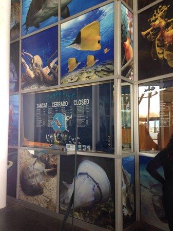 L'Aquarium de Barcelona: Ingresso