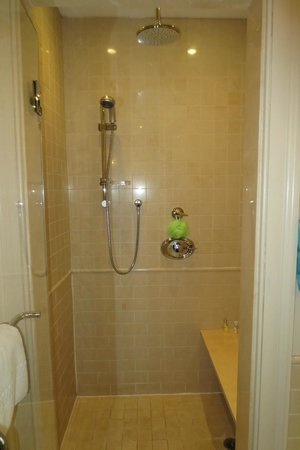 Rittenhouse 1715, A Boutique Hotel: Walk-in shower (Room 211)