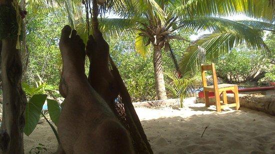 Hostal La Isla: Relax en la Isla