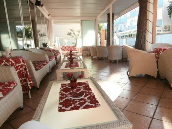 Hotel Aurelia: zona relax
