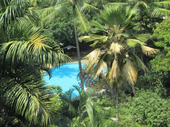 The Oberoi, Bengaluru : Lush gardens & view from room