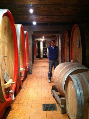 Agriturismo Erbaluna: Andrea in his cellar