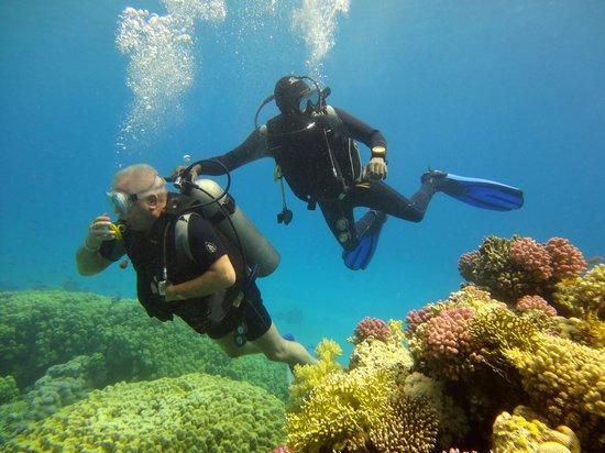 Jaz Mirabel Beach: aqua dive 3
