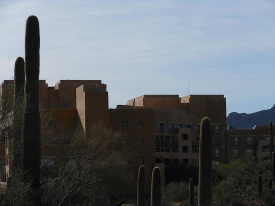 JW Marriott Tucson Starr Pass Resort & Spa : View of hotel from hiking path