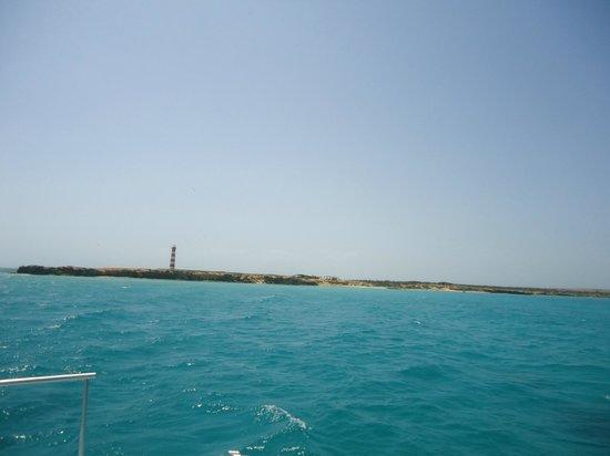 Isla Cubagua : Isla de Cubagua