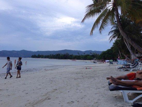 Novotel Samui Resort Chaweng Beach Kandaburi : Strand beim Hotel
