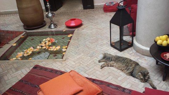 Riad Boussa : une petite pause entre deux souks.