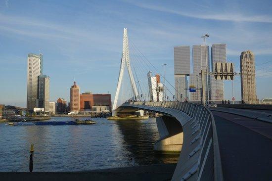 Erasmus Bridge: Erasmusbroen