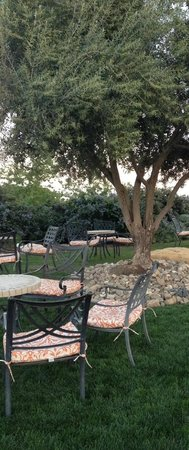 Calcareous Vineyard: Outdoor patio