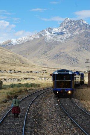 PeruRail Titicaca: The Train to Puno, La Raya