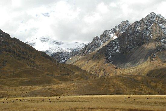 PeruRail Titicaca: Snow Capped Mountains, La Raya