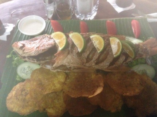 Drakes Kitchen, Casa El Tortugo : Red snapper