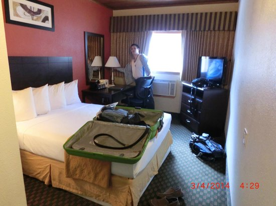 Quality Inn & Suites Seattle : single queen room.