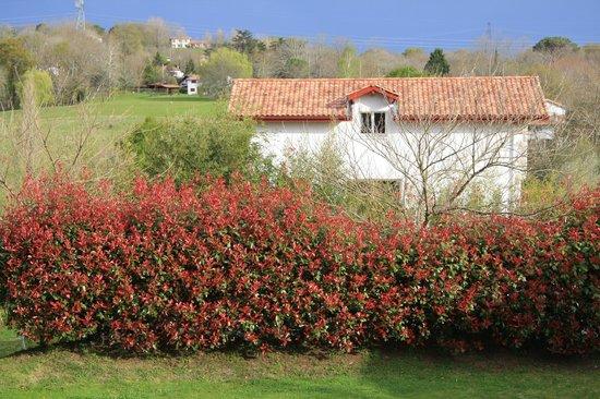 L'Auberge Basque: unas vistas