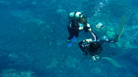 Buceo Isla de Pascua : descenso