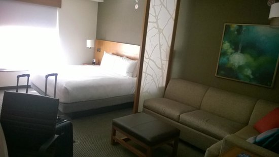 Hyatt Place Austin Downtown: Hotel Room