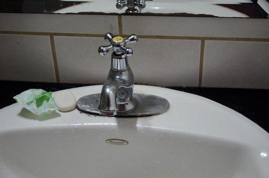Alajuela Backpackers Boutique Hostel : il mega lavandino con un rubinetto