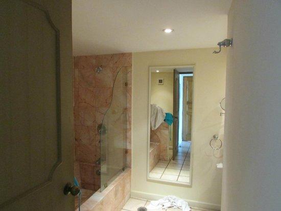 Crown Paradise Golden Resort Puerto Vallarta : room bathroom