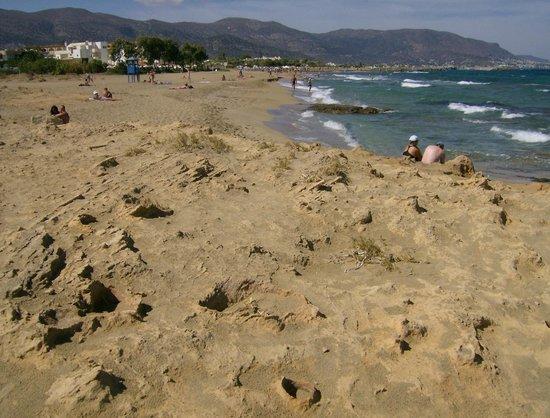 Phaedra Beach Hotel: Beach