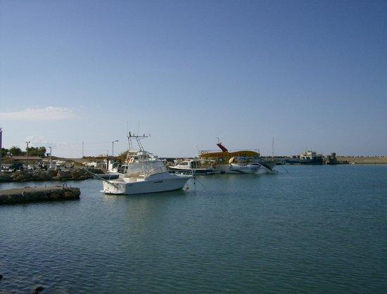 Phaedra Beach Hotel: Marina