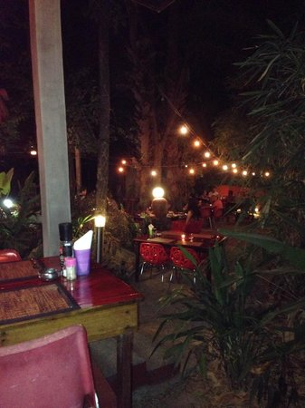 Red Snapper : Evening ambiance