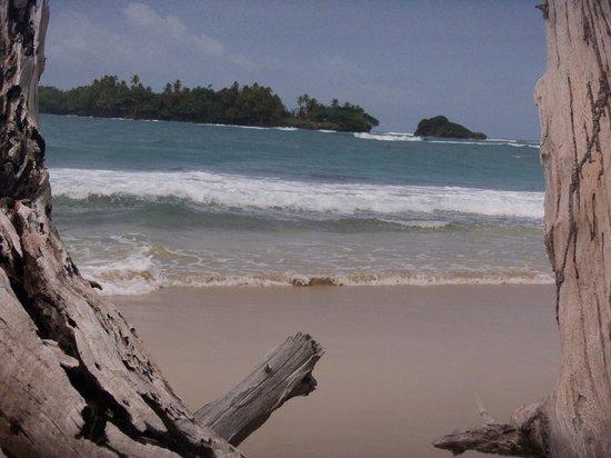 Parque Nacional Marino Isla Bastimentos : Una de las playas