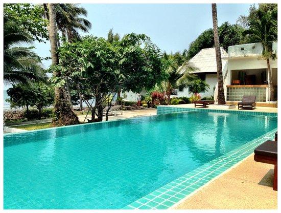 Warapura Resort: DIVE!