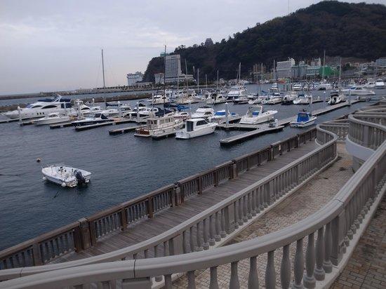 Nagisa Shinsui Park Moon Terrace : 謎のひな壇