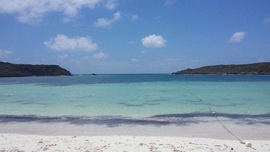 Media Luna Beach: No waves !