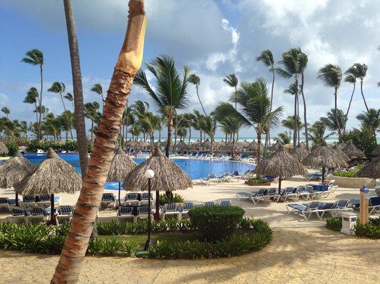 Grand Bahia Principe Punta Cana: Beach pool