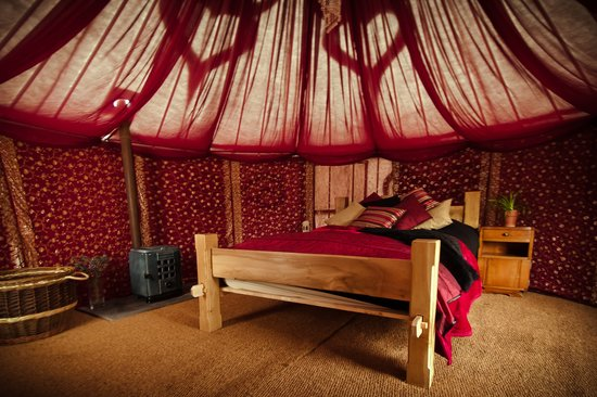 Plush Tents Glamping