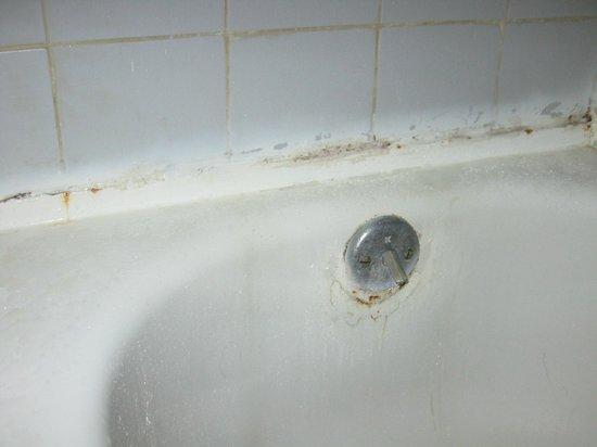 Bar-B-Barn : vasca nuova