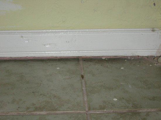 Bar-B-Barn: pulizia pavimento
