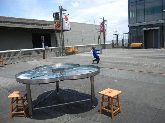 The Exploratorium: Outside Exploratorium Exhibition