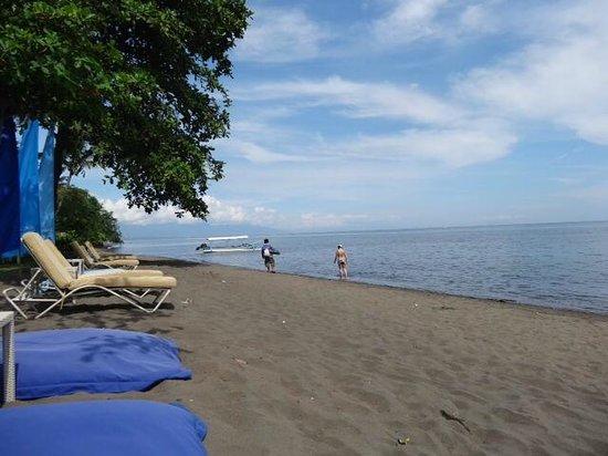 The Lovina: Beach