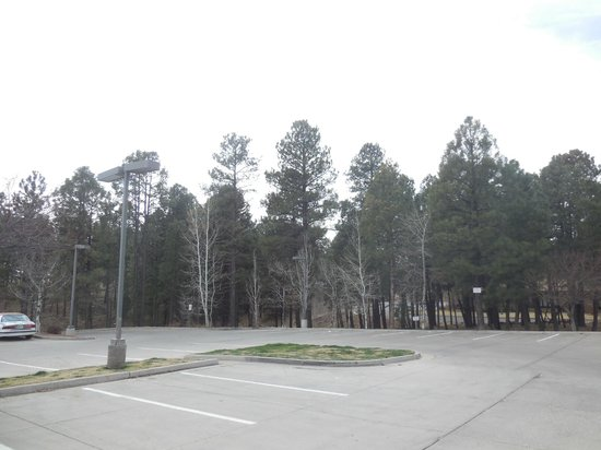 Comfort Inn Flagstaff: view from the parking lot