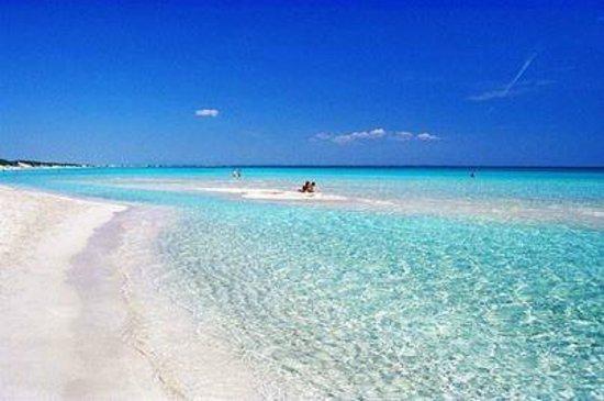 Sirena Beach: per fare foto più nitide .aspettare. condizioni  di luce favorevoli